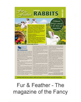 Fur & Feather Magazine